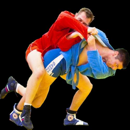 Поделки на тему спорта самбо